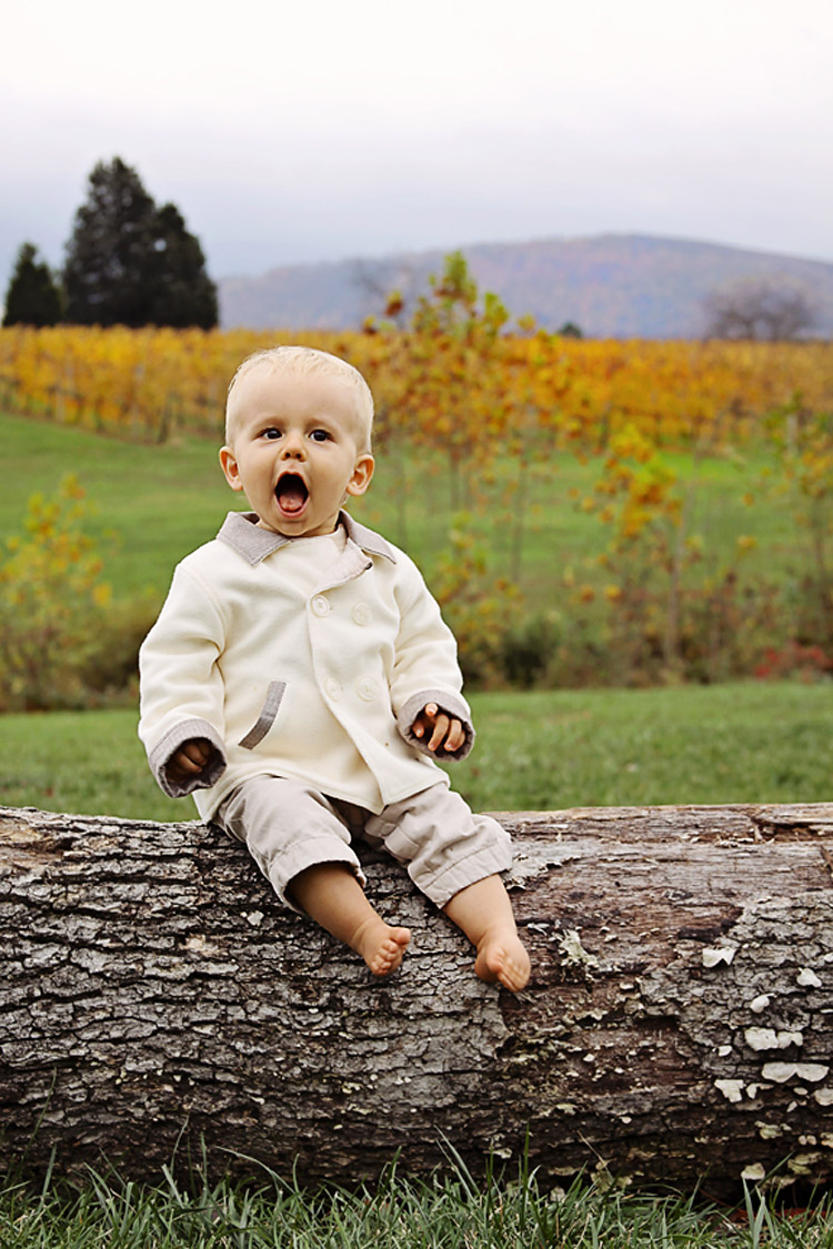 One year old at a vineyard in Charlottesville, VA
