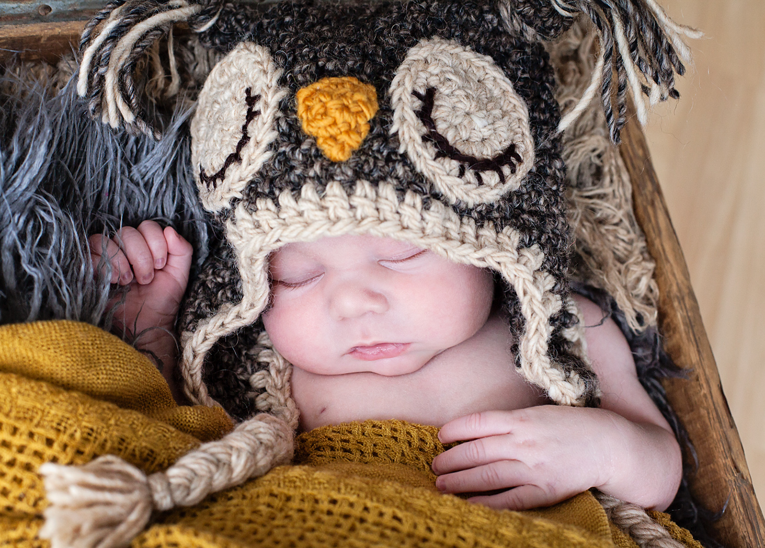 newborn in owl hat photography